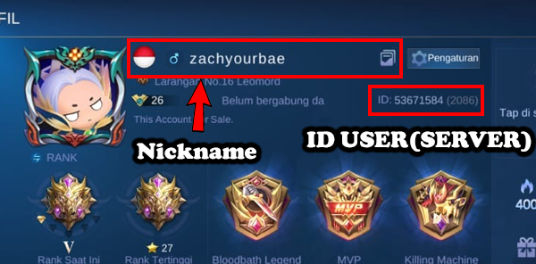 Nickname dan User ID(Server)